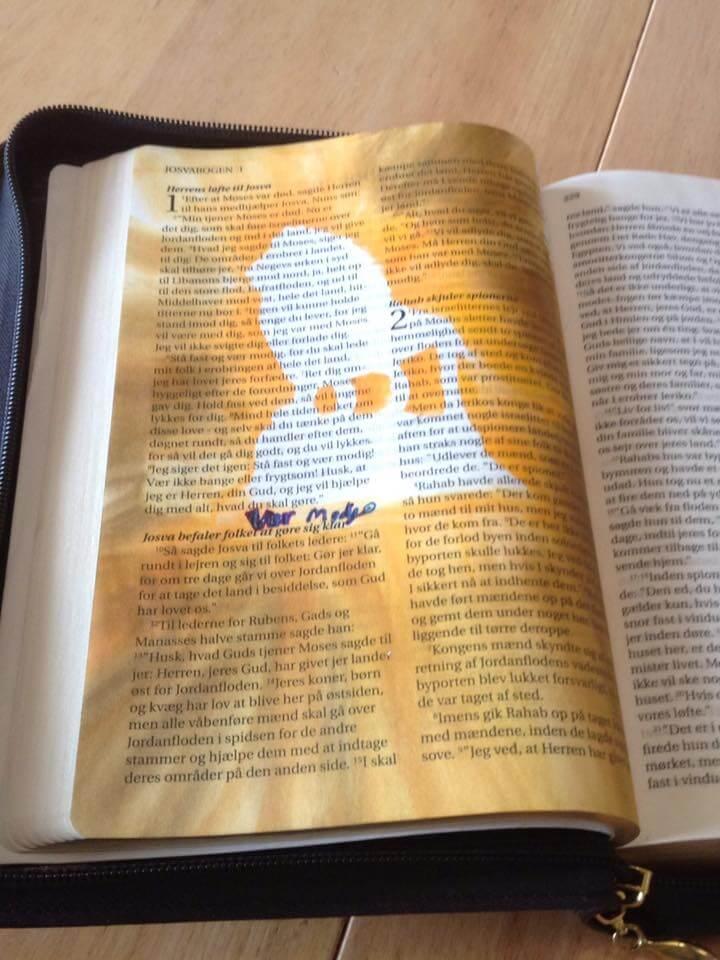 Bibel journal2