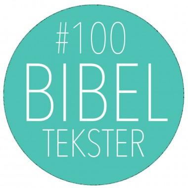 Bibelen på 100 dage