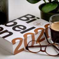 Bibelen 2020 - styrker og svagheder