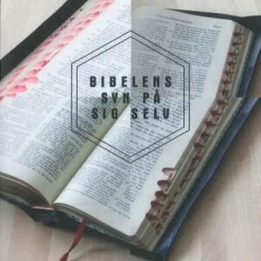Anmeldelse: Få substans bag bibelsynet