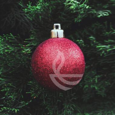 Ny julekalender i BibelTid
