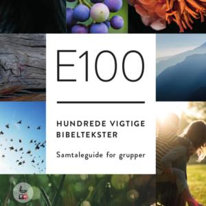 E100 studiehæfte