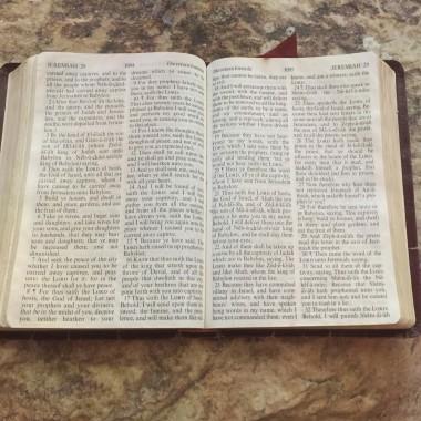 20 bibelcitater om Bibelen