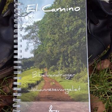 UDSALG - El Camino-bog til 40 kr